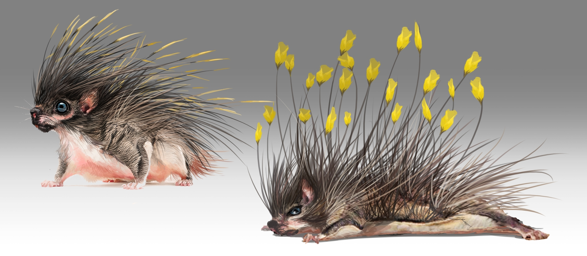 The Flower-cup Porcupine concept Art